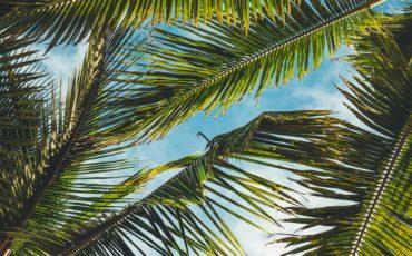Morningside Miami-Nuevo desarrollo para Upper East Side.